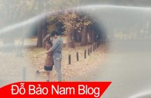 Download style Proshow Producer wedding đẹp mới nhất by Ашхен В [P01]