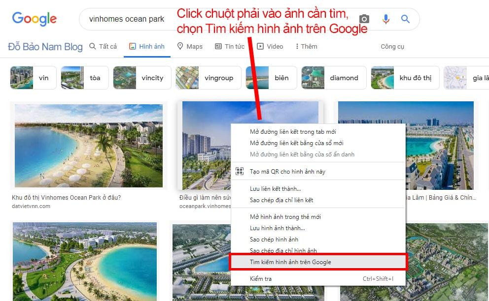 Click chuột phải vào ảnh cần tìm, chọn Tìm kiếm hình ảnh trên Google